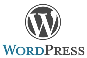 WordPress.com into this homepage culmsee.com